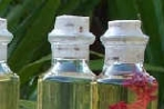 Body Oils in Beautiful Glass Bottles